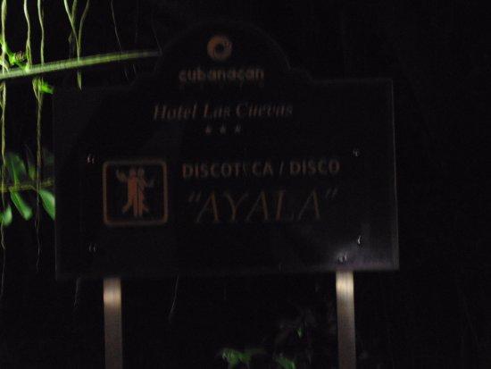 Disco Ayala: pic 1