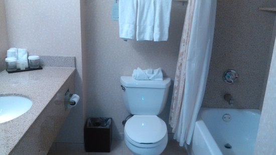 Embassy Suites by Hilton Sacramento - Riverfront Promenade: large sink counter and bathtup