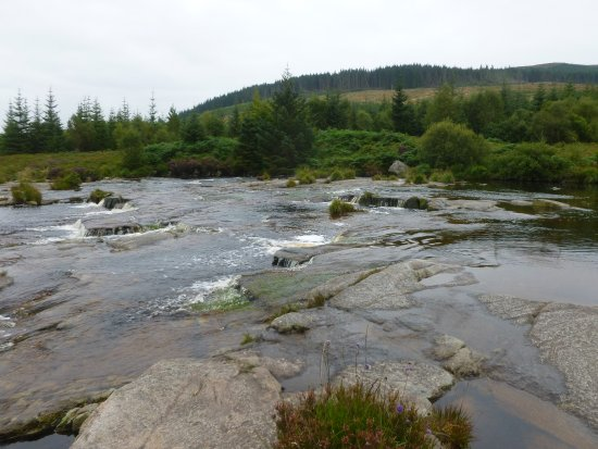 Galloway Forest Park, UK: Otter Pool
