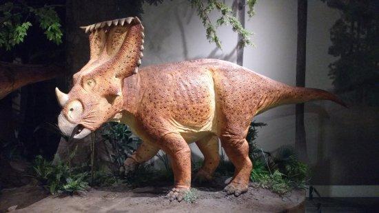 Ottawa, Canadá: Life-sized Horned Dinosaur Model