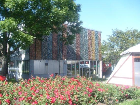 Miejska Galeria Sztuki