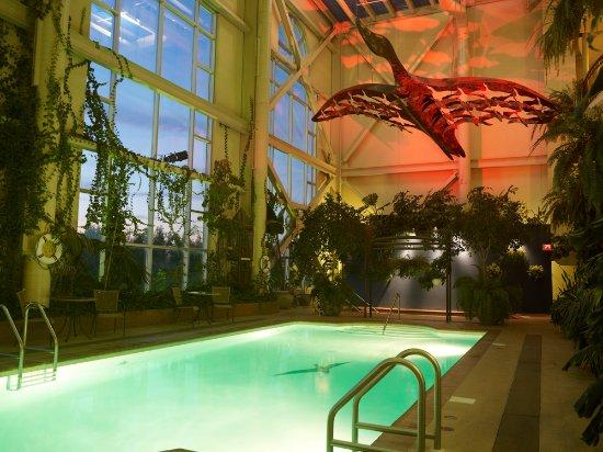 Hotel L'Oiseliere - Levis: Piscine intérieure