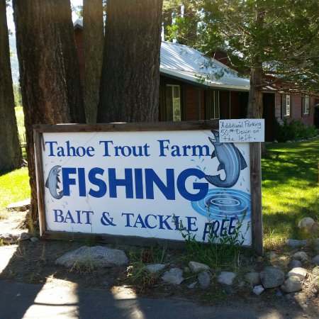 Tahoe Trout Farm: 20160709_104906_large.jpg