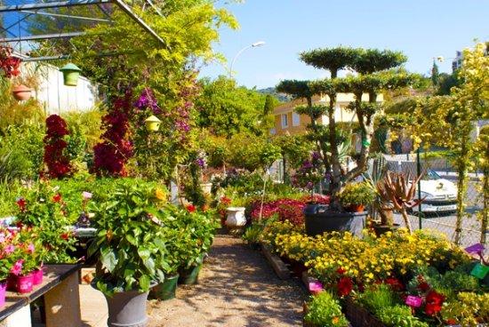 Jardinerie Farigoulette