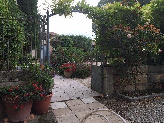 Maison d'Hotes Le Cèdre : The garden at Le Cedre