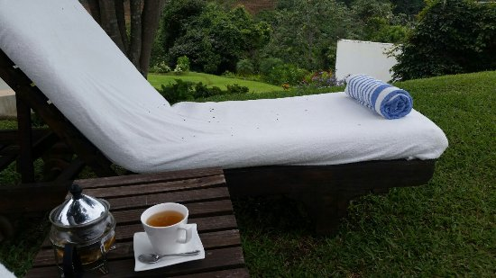 Asclepios Wellness & Healing Retreat: No coffee available, just relaxing teas