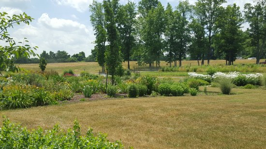Skaneateles, Nowy Jork: Grounds and gardens on a hot July afternoon in drought-like conditions