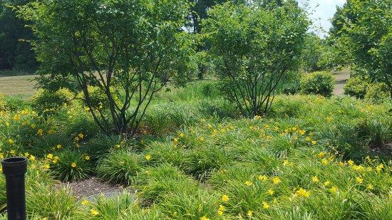 Skaneateles, Nowy Jork: A walk amongst the gardens