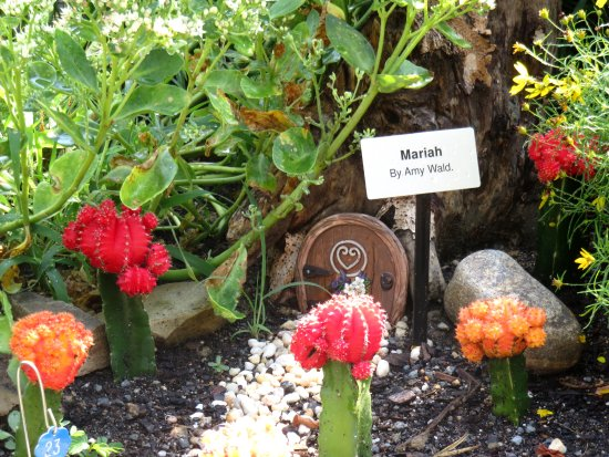Lake Lure, Carolina del Nord: Look at the colorful cactus and the tiny door for the fairie