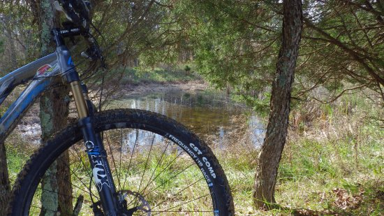 Skullbuster Mountain Bike Trail