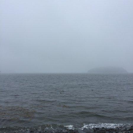 Winter Harbor, ME: photo0.jpg