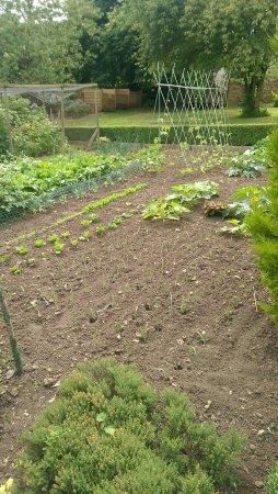 Bourton-on-the-Hill, UK: Gardens