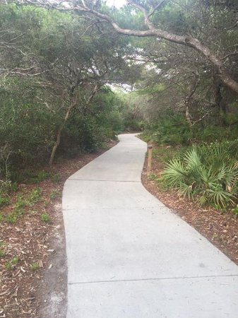 Henderson Beach State Park Campground: Pathway to beach