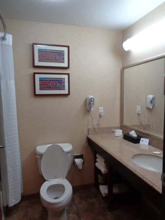 Comfort Inn & Suites Cedar City: Clean modern bathroom
