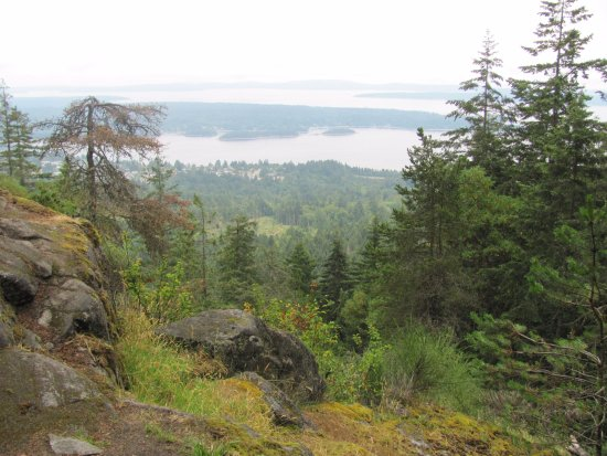 Ladysmith, كندا: Ladysmith from the viewpoint on Heart Lake trail