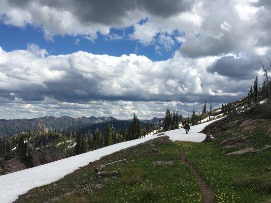 Swan Lake, MT : 4 day llama trek