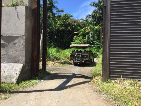 Kaneohe, Hawaje: photo1.jpg