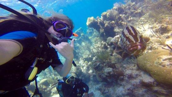 Brendals Dive Center & Water Sports: Grouper selfie