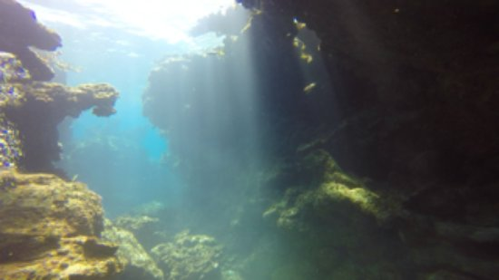 Brendals Dive Center & Water Sports: Exploring the beautiful underwater terrain