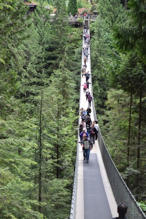 Vancouver Utara, Kanada: Stepping off the suspension bridge (Made it!)