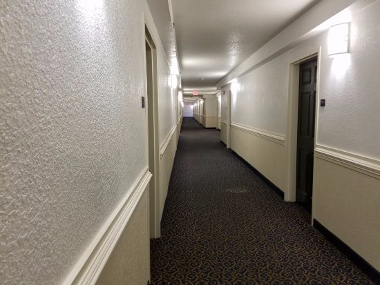 InTown Suites Chicago Northwest: The hall carpet stinks of stale cigarette, has bleach stains everywhere, is mostly disgusting.