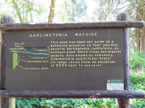 Florence, OR: sign about the wayside