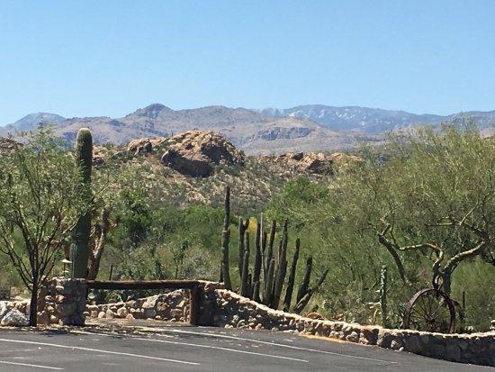Tanque Verde Ranch: photo0.jpg