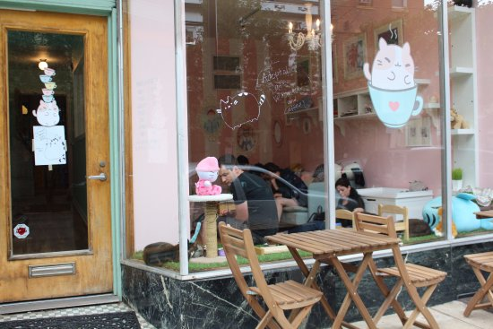Kawaii Kitty Cafe