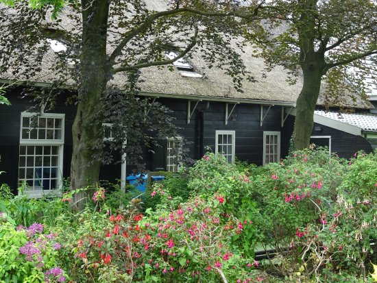 Historische Tuin Aalsmeer : Fuschia collectie historische tuin aalsmeer july picture of