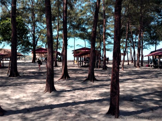 Talisayin Cove: back view of the cottages