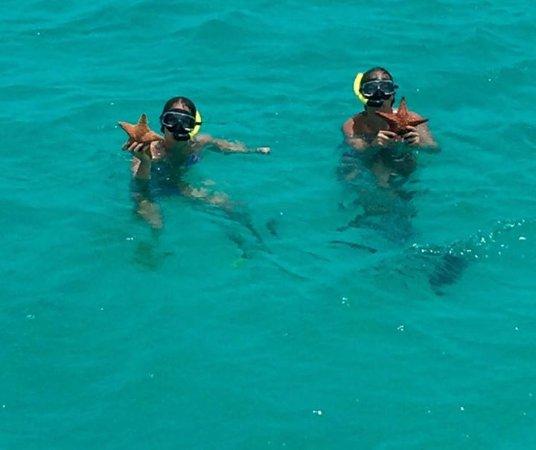 Mi Dushi : The sea life