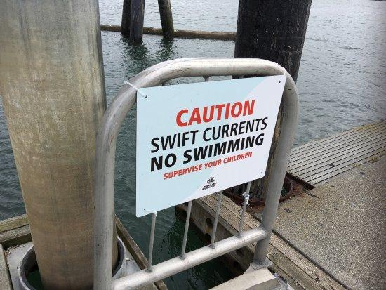 Everett, WA: photo7.jpg