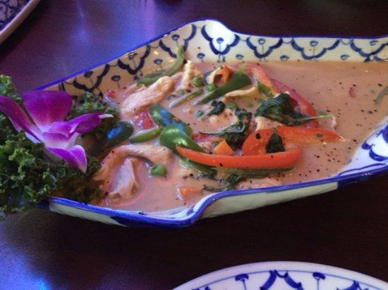 Ocoee, FL: Green Curry with Chicken
