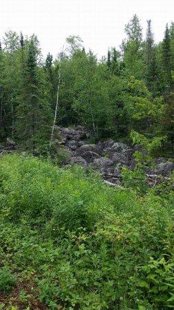 Mesabi Trail: received_10207803964151029_large.jpg