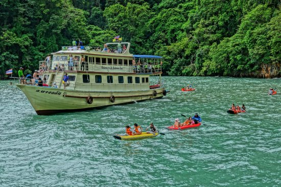 Phang Nga Bay: From cruiser boat, 2-3 tourists were transferred into a canoe and accompanied by a skilful paddl