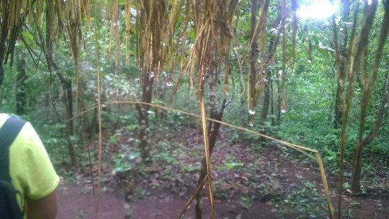 Cotigo Wildlife Sanctuary