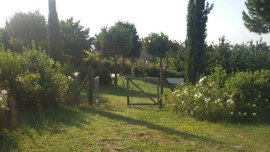 Mergo, Italie : 20160709_182012_large.jpg