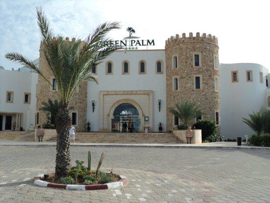 Foto Green Palm
