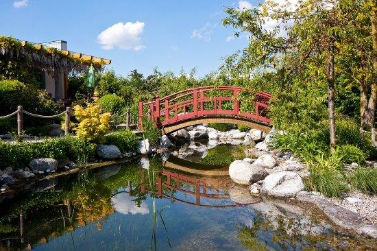 Leyk Lotos-Garten