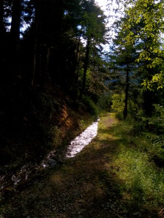 Arta, اليونان: Το μονοπάτι που οδηγεί στον καταρράκτη