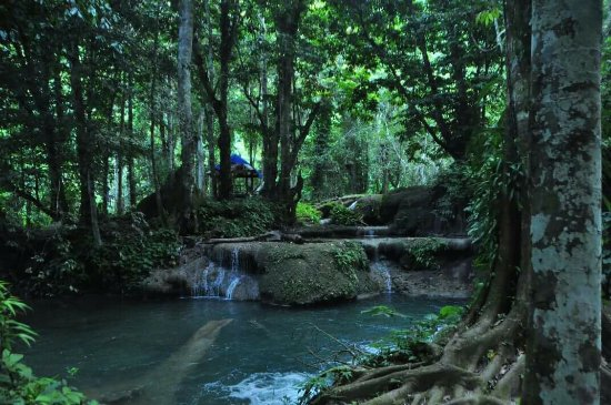 Luwuk, Indonesia: FB_IMG_1468146586892_large.jpg