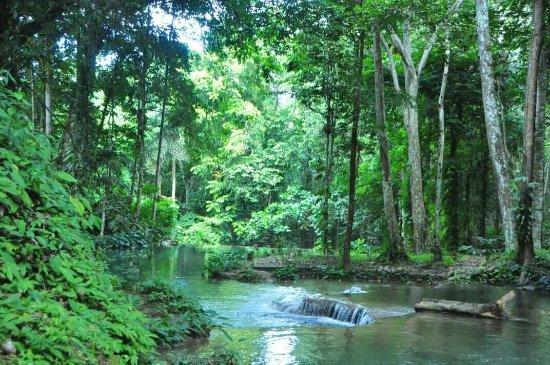 Luwuk, Indonesia: FB_IMG_1468146578837_large.jpg