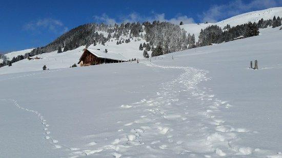 Morgins, Suisse : Sentier raquette