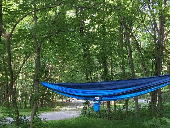 Boonsboro, MD: Good place for a hammock.