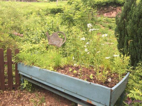 Cornimont, Francia: Jardin Et Objets Des Panrees