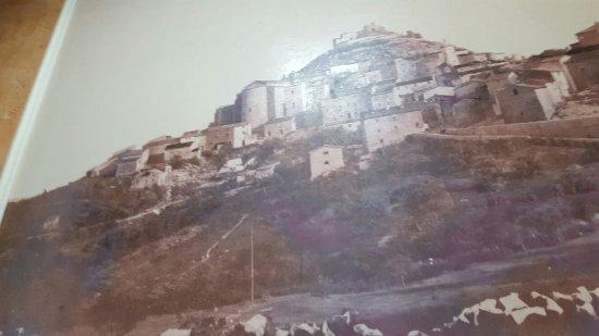 Tolfa照片