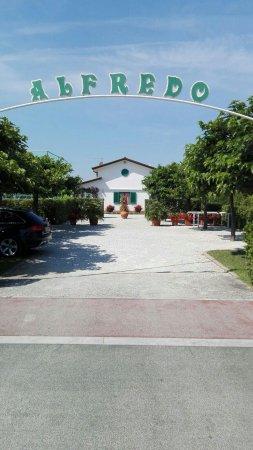 Bagno Alfredo - Picture of Bagno Alfredo, Forte Dei Marmi - TripAdvisor