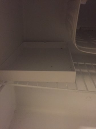 Grand Imperial Hotel: dead cockroahes inside minibar! (photos while checkin)