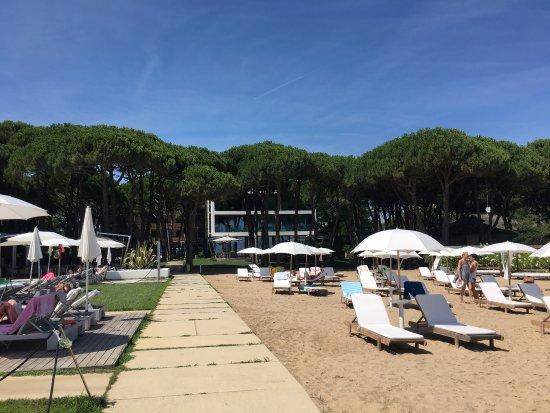Hotel Mediterraneo: photo0.jpg