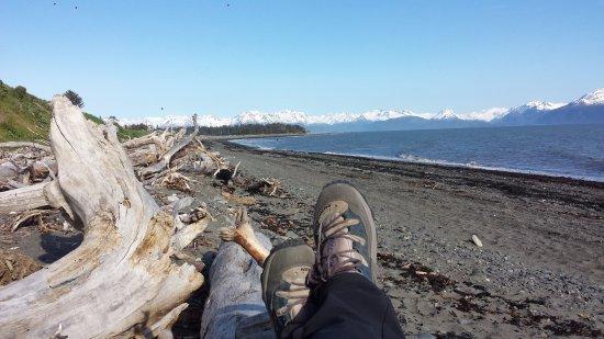 Driftwood Inn & Homer Seaside Lodges: 2min away from the rv site